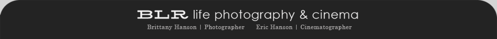 Northern California Wedding Photographers | San Francisco Bay Area, Napa, Sonoma,  and Las Vegas logo